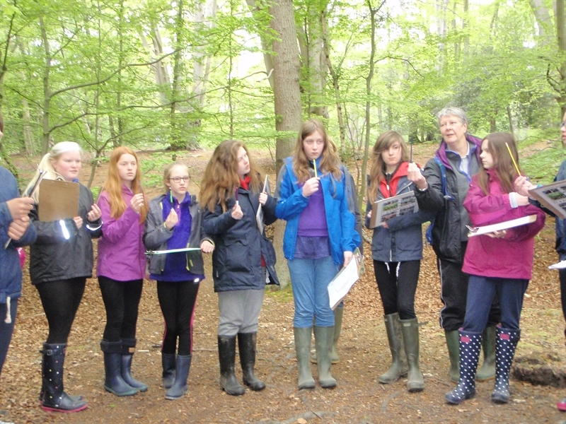 Year 7 Geography students head to Epping Forest