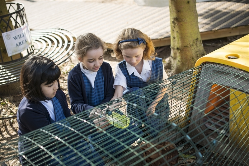 Forest School comes to St Mary's School, Cambridge