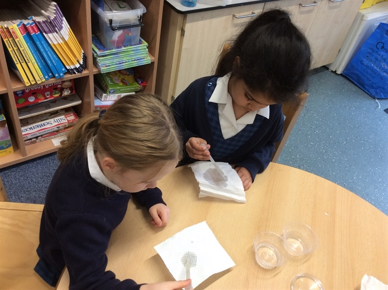 Science experiment leads to enquiry