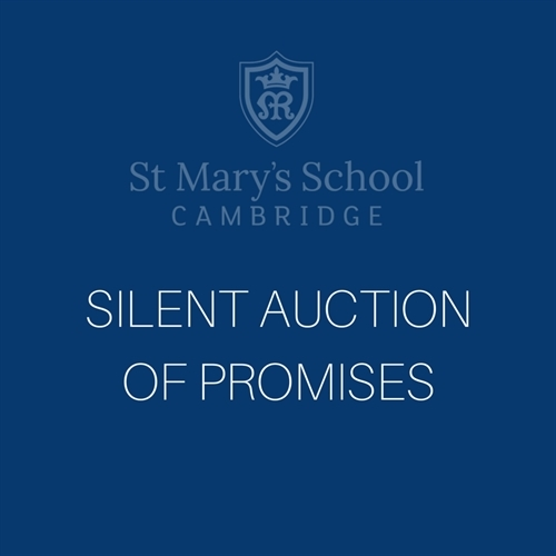 Silent Auction of Promises - 14 to 28 March