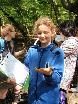 Year 7 learn about rivers and water cycles at the Epping Forest Field Study Centre